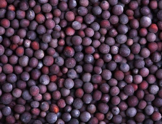Pantone-Farbe 2018 - Ultra Violet